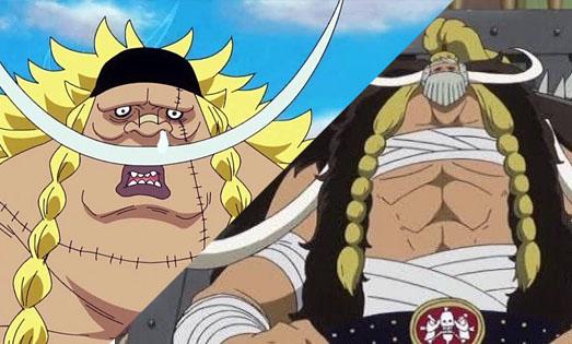One Piece: Tin được không, Jack mới chính là đứa con trai của Râu Trắng? (P1) - Ảnh 2.