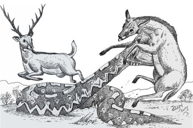 Điểm tên những loài bò sát khổng lồ từng xơi tái cả cá voi tiền sử - Ảnh 9.