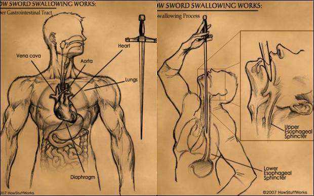 Lật tẩy ảo thuật nuốt kiếm: Hóa ra cũng là kỹ xảo, nhưng nguy hiểm khó tưởng - Ảnh 2.