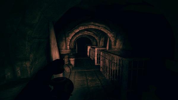 Game kinh dị Amnesia: A Machine for Pigs sắp phát tặng miễn phí 100% - Ảnh 5.