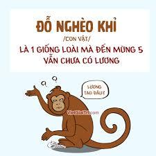 Khám phá về hot trend Đỗ nghèo khỉ, hot trend châm biếm hài hước nổi tiếng nhất nhì trên mạng xã hội - Ảnh 3.