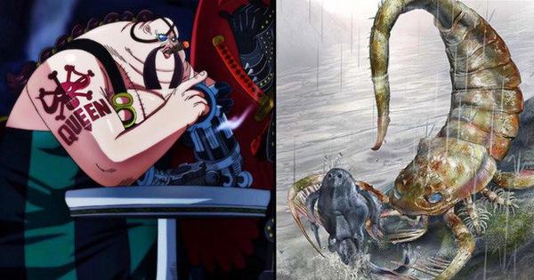 One Piece: Top 5 nhân vật bị mất đi cánh tay, người được chữa trị kẻ mang thương tật suốt đời - Ảnh 2.