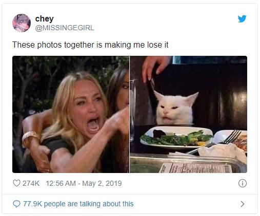 Meme cô gái chửi con mèo bắt nguồn từ đâu? - Ảnh 3.