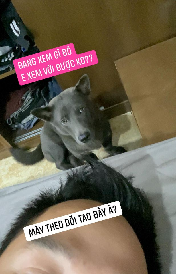 Idol Nguyễn Văn Dúi gây sốc với ngoại hình già nua, béo phệ và lại còn bị xích cổ đáng thương? - Ảnh 9.