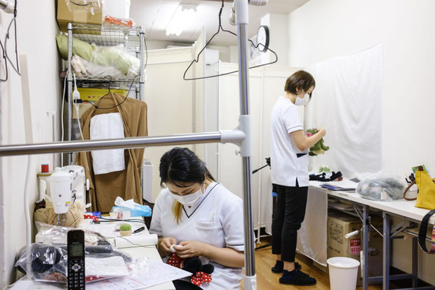 Độc lạ phòng khám chữa bệnh cho... thú nhồi bông ở Nhật, viện phí có thể lên đến 111 triệu - Ảnh 1.