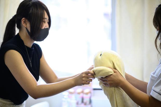 Độc lạ phòng khám chữa bệnh cho... thú nhồi bông ở Nhật, viện phí có thể lên đến 111 triệu - Ảnh 3.