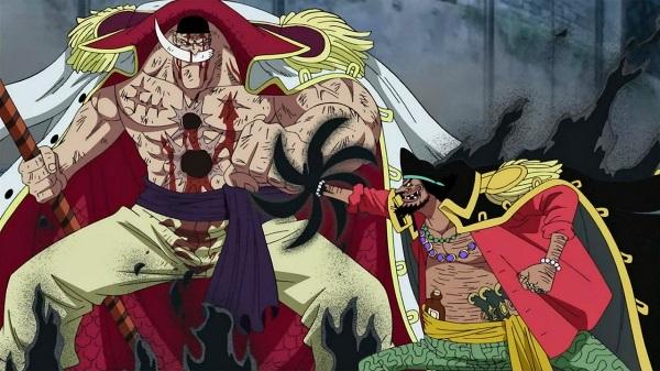 One Piece: Không phải trác ác quỷ của Kaido, Zoan thần thoại của Marco mới là thứ mà Râu Đen muốn nhắm tới - Ảnh 1.