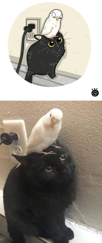 Khi những chú mèo meme được họa lại theo phong cách hoạt hình siêu cute, đốn tim từ ảnh đầu luôn - Ảnh 1.