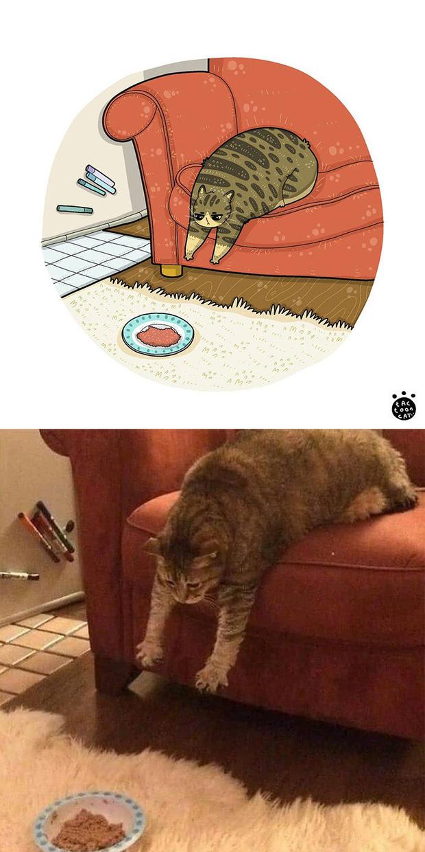 Khi những chú mèo meme được họa lại theo phong cách hoạt hình siêu cute, đốn tim từ ảnh đầu luôn - Ảnh 2.