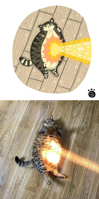 Khi những chú mèo meme được họa lại theo phong cách hoạt hình siêu cute, đốn tim từ ảnh đầu luôn - Ảnh 12.