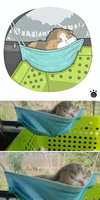 Khi những chú mèo meme được họa lại theo phong cách hoạt hình siêu cute, đốn tim từ ảnh đầu luôn - Ảnh 3.