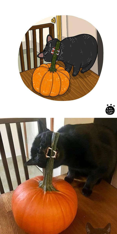 Khi những chú mèo meme được họa lại theo phong cách hoạt hình siêu cute, đốn tim từ ảnh đầu luôn - Ảnh 22.