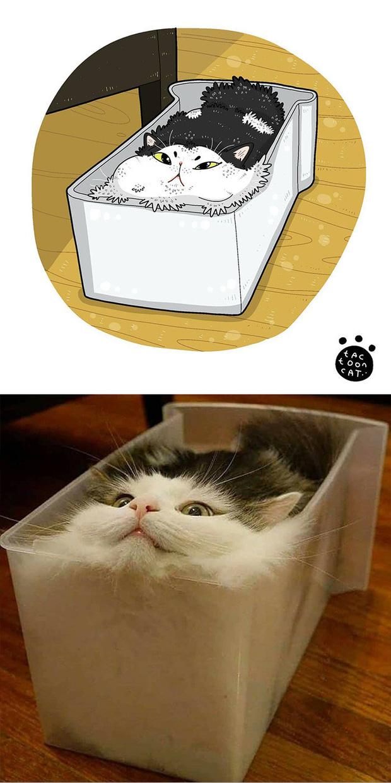 Khi những chú mèo meme được họa lại theo phong cách hoạt hình siêu cute, đốn tim từ ảnh đầu luôn - Ảnh 8.