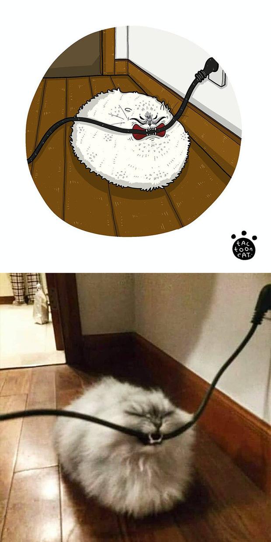 Khi những chú mèo meme được họa lại theo phong cách hoạt hình siêu cute, đốn tim từ ảnh đầu luôn - Ảnh 10.