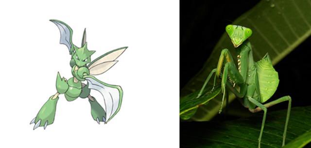 Nguyên mẫu đời thực của các Pokémon đình đám - Ảnh 5.