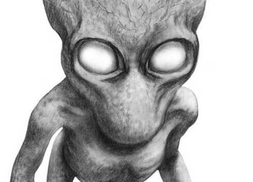 Những loài sinh vật kinh dị và đáng sợ, vượt qua trí tưởng tượng của con người - Ảnh 1.