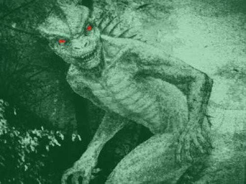 Những loài sinh vật kinh dị và đáng sợ, vượt qua trí tưởng tượng của con người - Ảnh 5.
