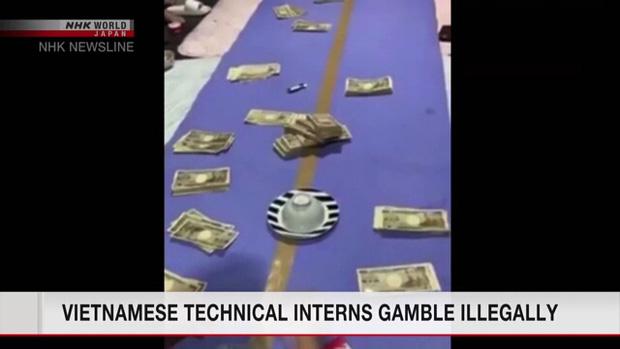 Đài truyền hình Nhật cảnh báo người dân dạng cờ bạc mới tên là sock deer, hóa ra là trò... xóc đĩa - Ảnh 2.