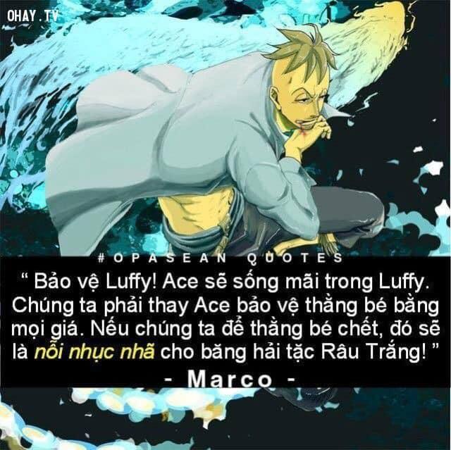 Cẩm nang các câu nói nổi tiếng trong truyện tranh One Piece giúp định hướng phương châm sống - Ảnh 1.