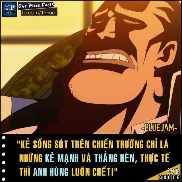 Cẩm nang các câu nói nổi tiếng trong truyện tranh One Piece giúp định hướng phương châm sống - Ảnh 5.