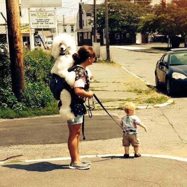 Loạt ảnh hài hước khi hội trẻ con được bố mẹ nhặt ở bãi rác về nuôi - Ảnh 3.