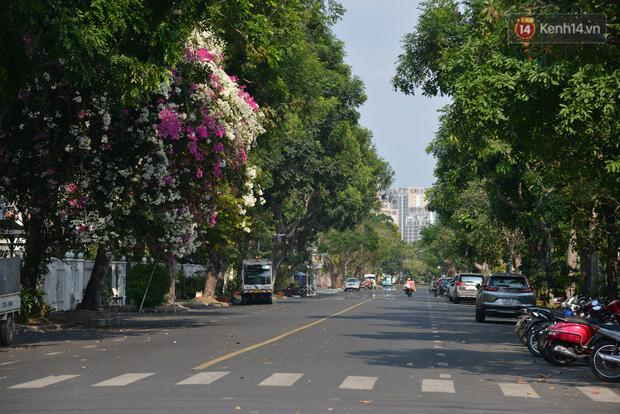 Người Hàn Quốc ở Sài Gòn giữa dịch Covid-19: Chỉ sống ở đây thôi là thấy yên tâm rồi vì Việt Nam phòng chống dịch rất tốt - Ảnh 1.