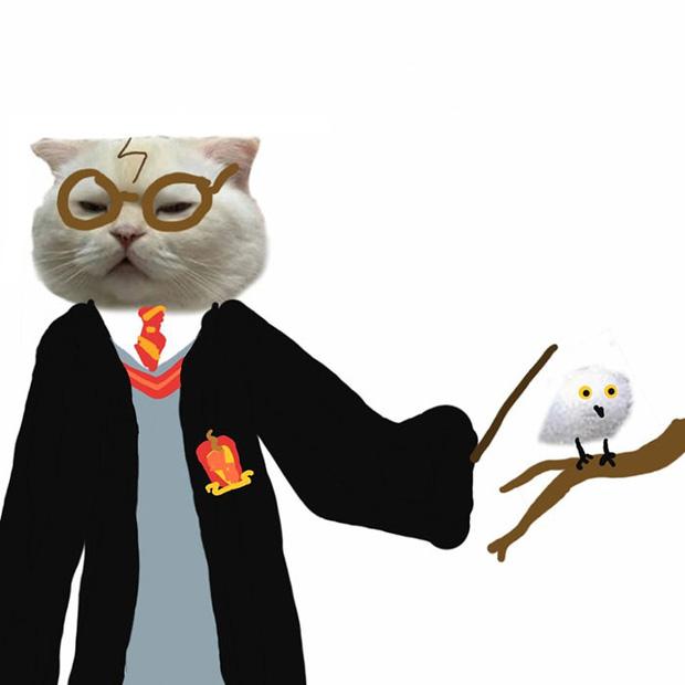 Ai đó yêu cầu vẽ một con mèo theo mẫu và cư dân mạng được dịp chơi tới bến cùng sự sáng tạo - Ảnh 14.
