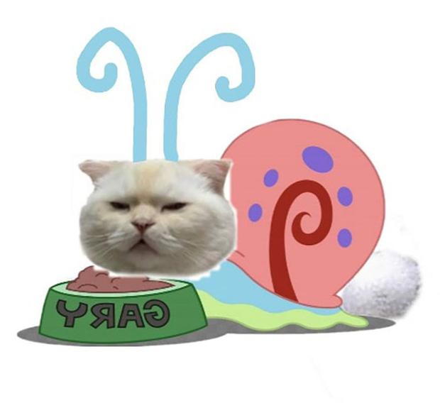 Ai đó yêu cầu vẽ một con mèo theo mẫu và cư dân mạng được dịp chơi tới bến cùng sự sáng tạo - Ảnh 18.