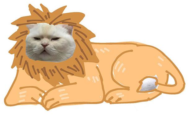 Ai đó yêu cầu vẽ một con mèo theo mẫu và cư dân mạng được dịp chơi tới bến cùng sự sáng tạo - Ảnh 19.