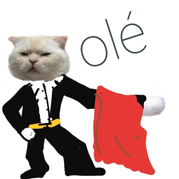 Ai đó yêu cầu vẽ một con mèo theo mẫu và cư dân mạng được dịp chơi tới bến cùng sự sáng tạo - Ảnh 7.