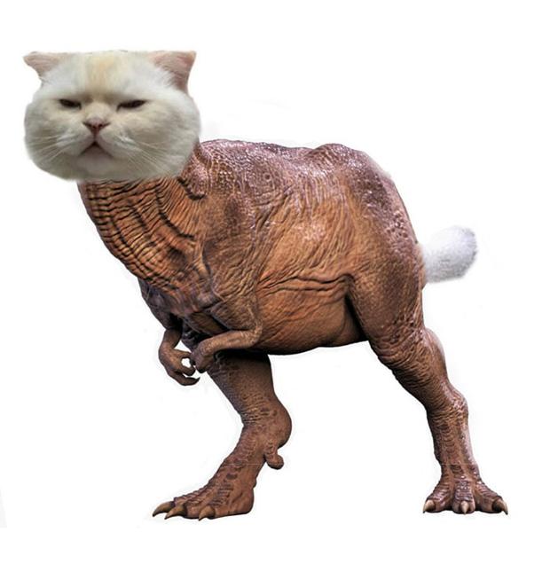 Ai đó yêu cầu vẽ một con mèo theo mẫu và cư dân mạng được dịp chơi tới bến cùng sự sáng tạo - Ảnh 9.