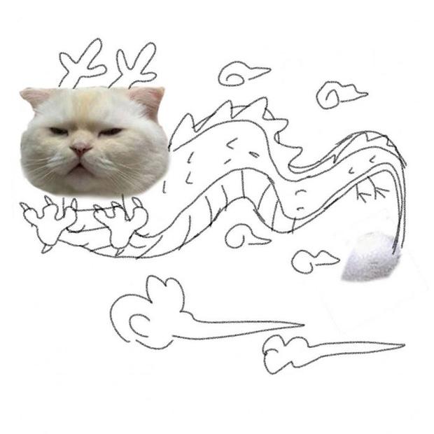 Ai đó yêu cầu vẽ một con mèo theo mẫu và cư dân mạng được dịp chơi tới bến cùng sự sáng tạo - Ảnh 10.