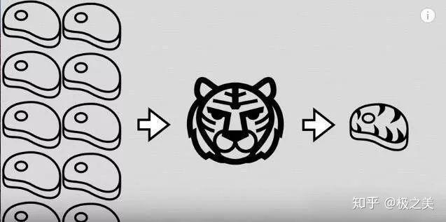 Tại sao nhân loại không thuần hóa hổ hay sư tử để làm gia súc hay thú cưỡi Photo-5-1584878138194655638901