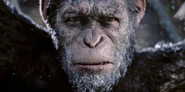 10 thương hiệu điện ảnh hay nhất trong một thập kỉ vừa qua, xem đến đâu mê luôn đến đó - Ảnh 9.