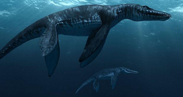 Top 10 sinh vật siêu khổng lồ thời tiền sử dễ bị nhầm thành khủng long - Ảnh 1.
