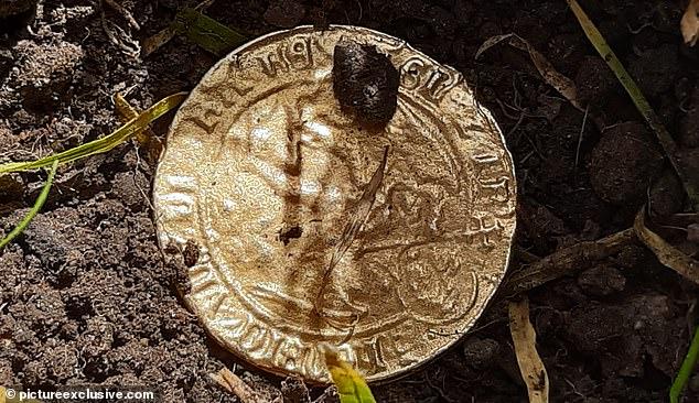 Buồn chán vì cách ly ở nhà nên giết thời gian bằng máy dò kim loại, người phụ nữ kinh ngạc khi phát hiện báu vật từ 500 năm trước - Ảnh 2.