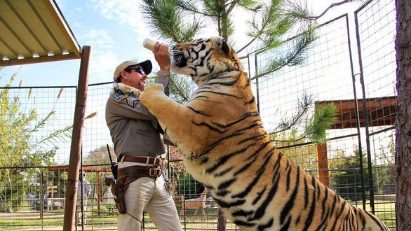 Tiger King: Phim sốc tận óc của Netflix về giới buôn bán động vật hoang dã, chẳng có gì ngoài drama và cú lừa! - Ảnh 2.
