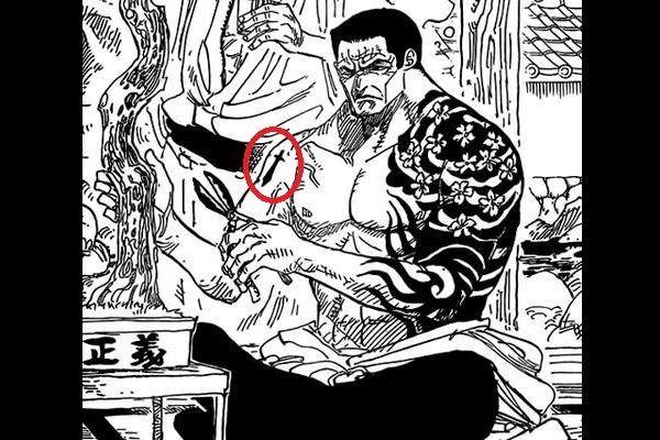 One Piece: 5 nhân vật có ngoại hình giống người Nhật nhưng không xuất thân từ Wano - Ảnh 3.