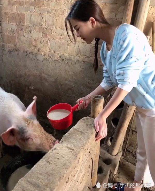 Khoe nhẹ bức ảnh đang cho lợn ăn, nàng hot girl nhận cả rổ gạch đá đến từ phía cộng đồng mạng - Ảnh 1.