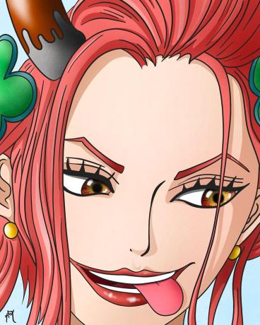 One Piece: Một thành viên trong Tobi Roppo có mối liên hệ mật thiết với đảo Amazon Lily của Boa Hancock? - Ảnh 4.