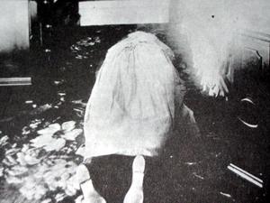 Chuyện rùng rợn: Vụ án Lizzie Borden và căn nhà ma bí ẩn - Ảnh 1.