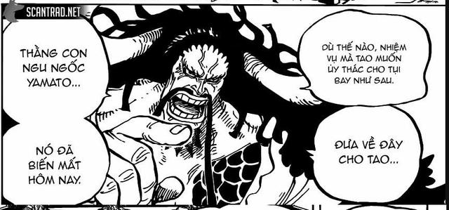 One Piece chap 983: Yamato đã gặp được Luffy, vai trò của con trai Kaido ở Arc Wano này là gì? - Ảnh 1.