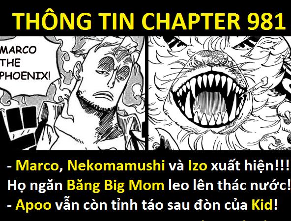 Spoiler One Piece chap 981: Marco xuất hiện chặn đánh băng Big Mom, Chopper chạm mặt Tứ Hoàng - Ảnh 6.