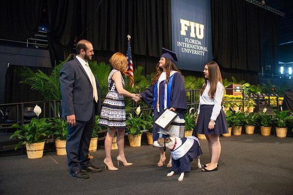 Đi học đều hơn cả chủ, chú chó bất ngờ được trao bằng cử nhân khiến cộng đồng mạng kinh ngạc - Ảnh 2.