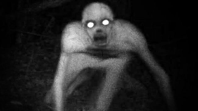 Những loài quái vật kinh dị từng nổi tiếng trên Internet: Là sự thật, hay toàn là cú lừa? - Ảnh 2.