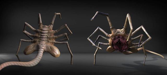 Những loài quái vật kinh dị từng nổi tiếng trên Internet: Là sự thật, hay toàn là cú lừa? - Ảnh 9.