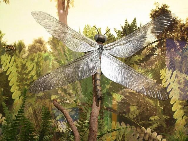 Những sinh vật siêu to khổng lồ từng tồn tại tồn tại trên Trái Đất từ trước tới nay - Ảnh 1.