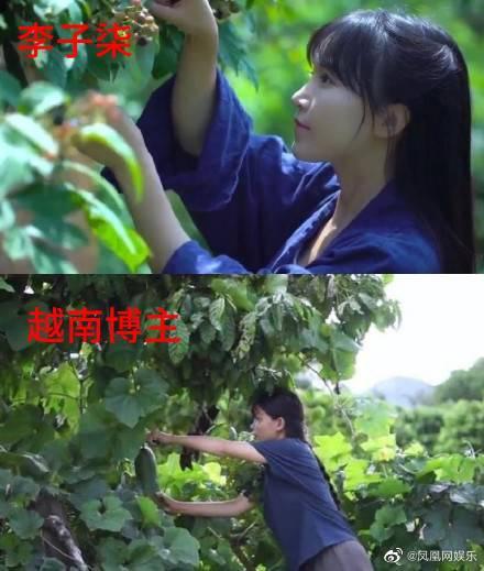 Cộng đồng mạng Trung Quốc dậy sóng trước kênh Youtube Việt nghi bắt chước Lý Tiểu Thất, lọt hẳn top 1 tìm kiếm trên Weibo - Ảnh 6.