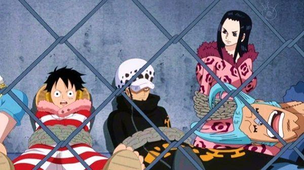 10 manh mối cho thấy Franky và Nico Robin sẽ trở thành một cặp sau khi One Piece kết thúc - Ảnh 2.