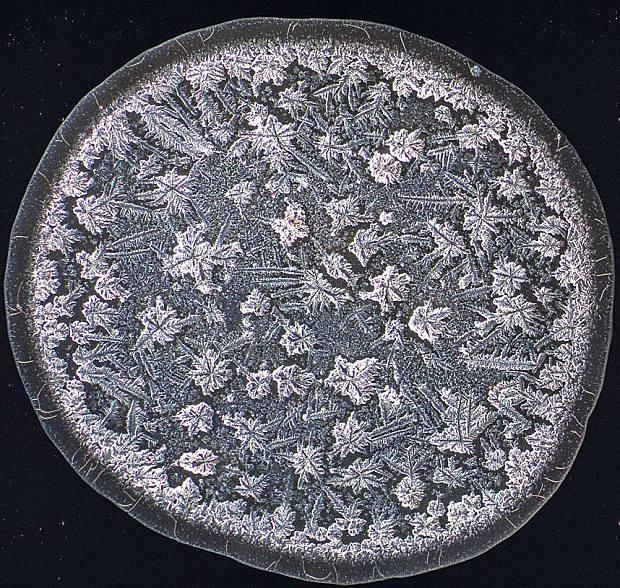 Những hình ảnh chưa từng thấy về nước mắt con người dưới kính hiển vi: Quái dị hơn cả chúng ta tưởng tượng - Ảnh 2.